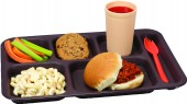 CORRECTIONAL COMPARTMENT MEAL TRAY